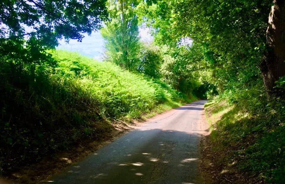 Day 3 – Rev'd Helen's Prayer Walk From Norwich To Walsingham